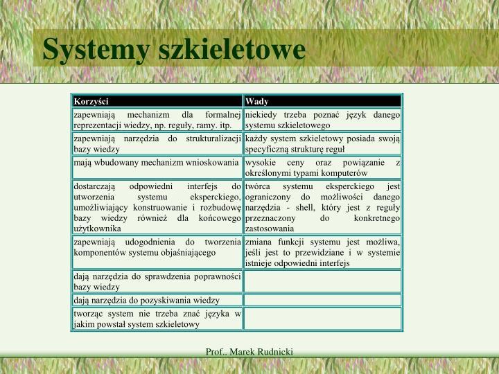 Systemy szkieletowe