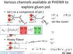 various channels available at phenix to explore gluon pol