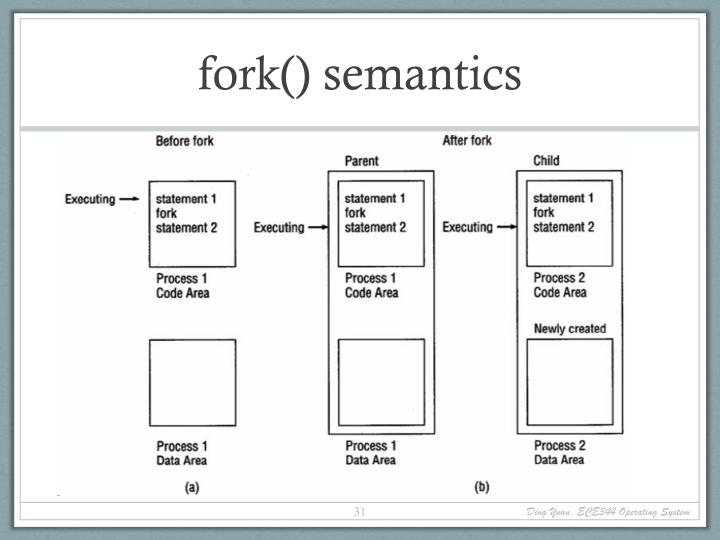 fork() semantics