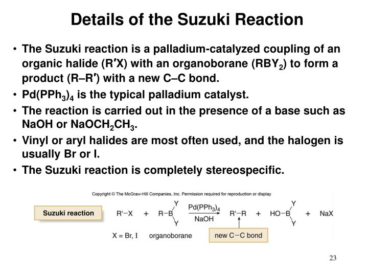Details of the Suzuki Reaction
