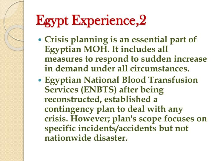Egypt Experience,2