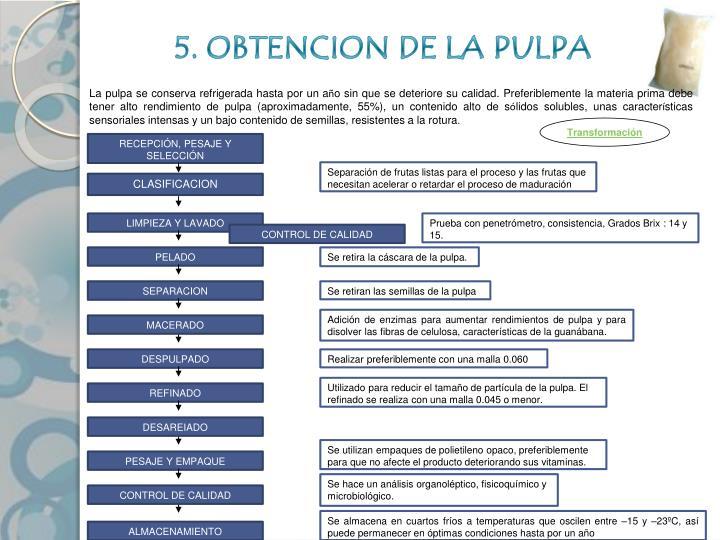5. OBTENCION DE LA PULPA