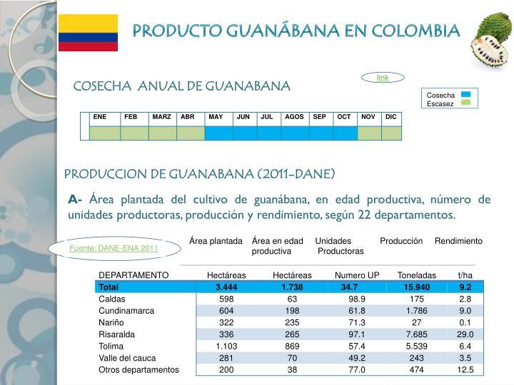 PRODUCTO GUANÁBANA EN COLOMBIA