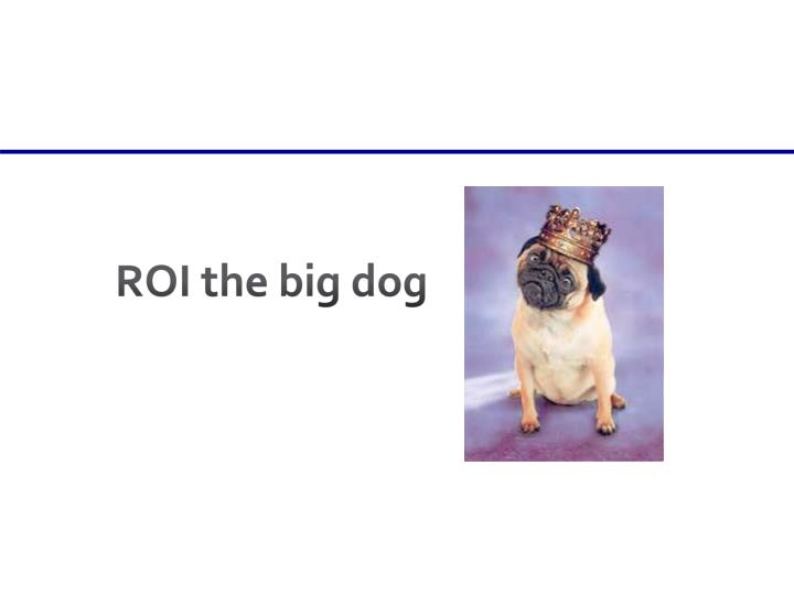 ROI the big dog