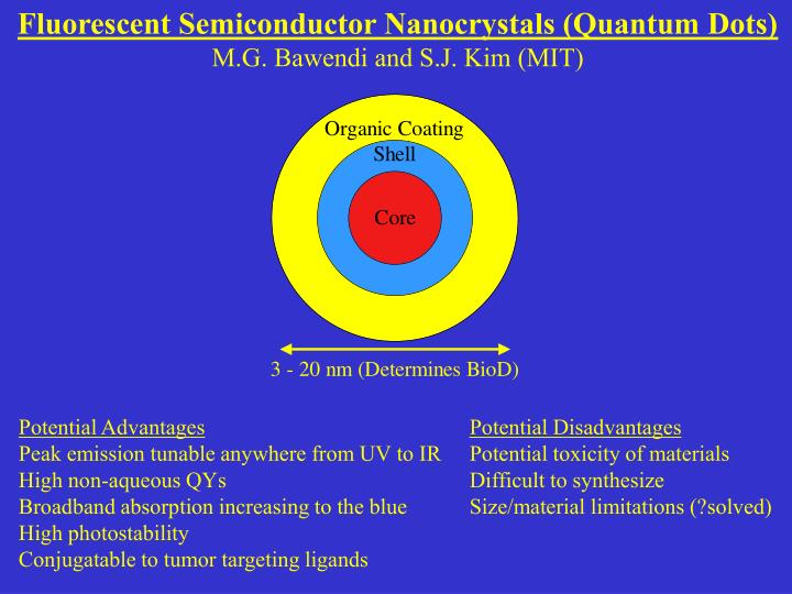 Fluorescent Semiconductor Nanocrystals (Quantum Dots)