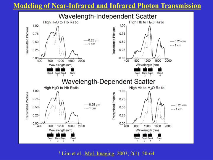 Modeling of Near-Infrared and Infrared Photon Transmission