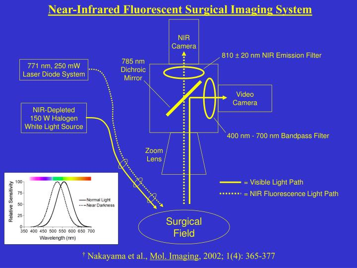 Near-Infrared Fluorescent Surgical Imaging System