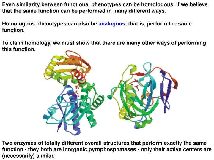 Even similarity between functional phenotypes can be homologous, if we believe that the same function can be performed in many different ways.