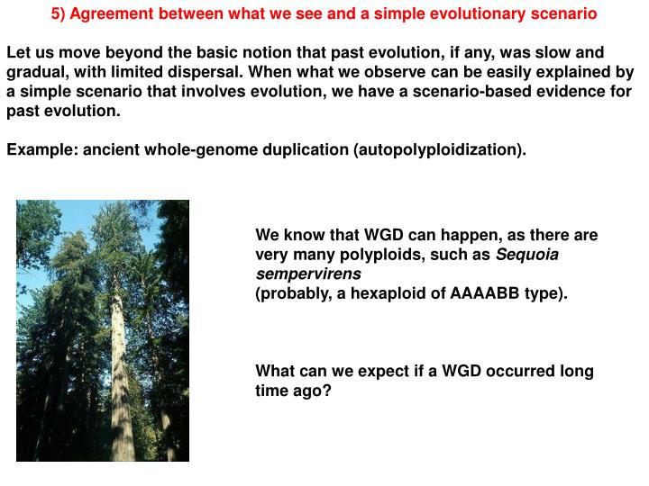 5) Agreement between what we see and a simple evolutionary scenario