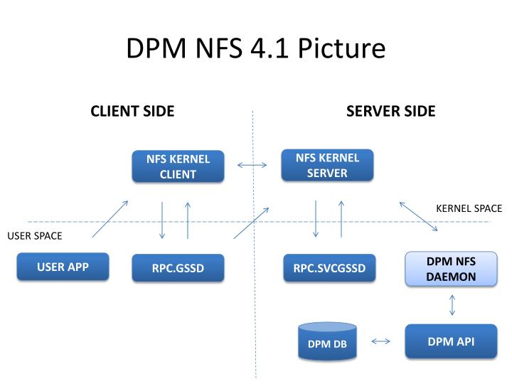DPM NFS 4.1 Picture