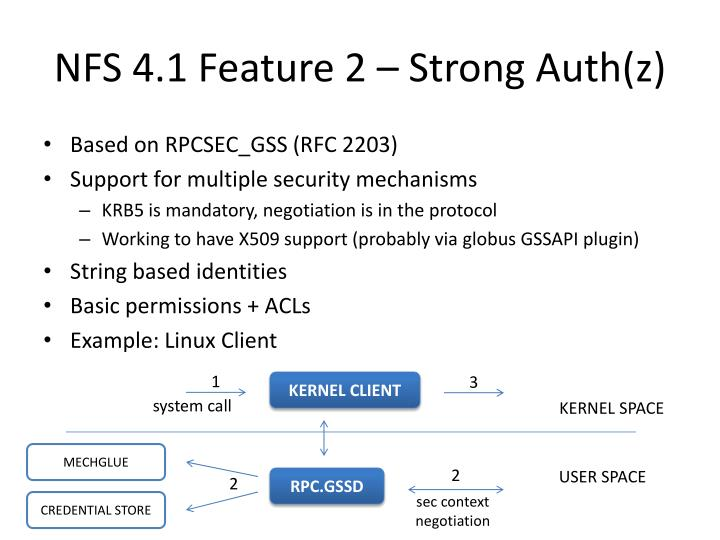 NFS 4.1 Feature 2 – Strong