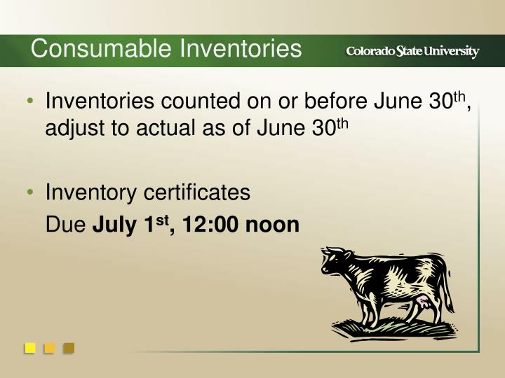 Consumable Inventories