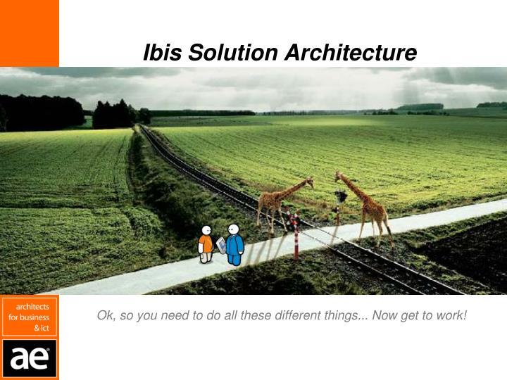 Ibis Solution Architecture