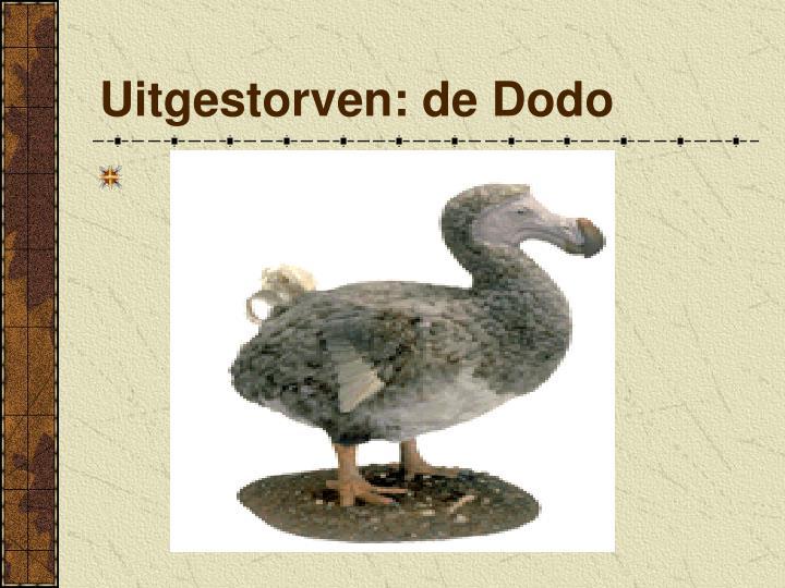 Uitgestorven: de Dodo