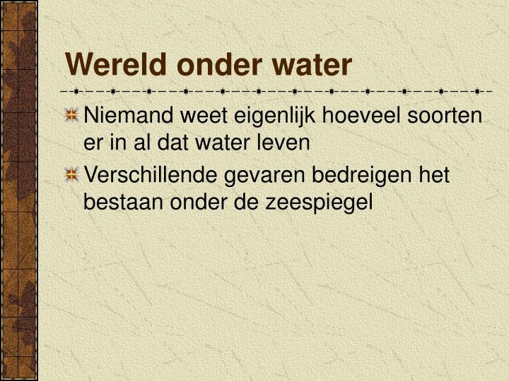 Wereld onder water