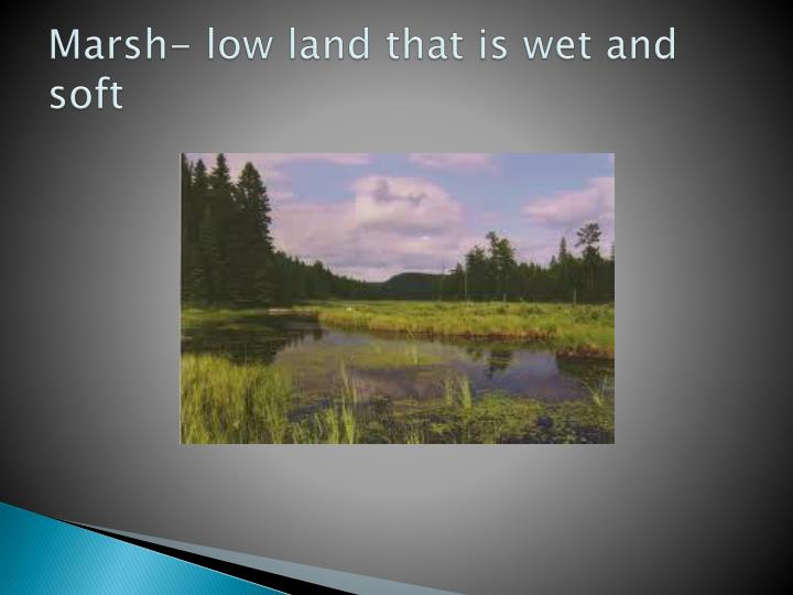 Marsh- low land that is wet and soft
