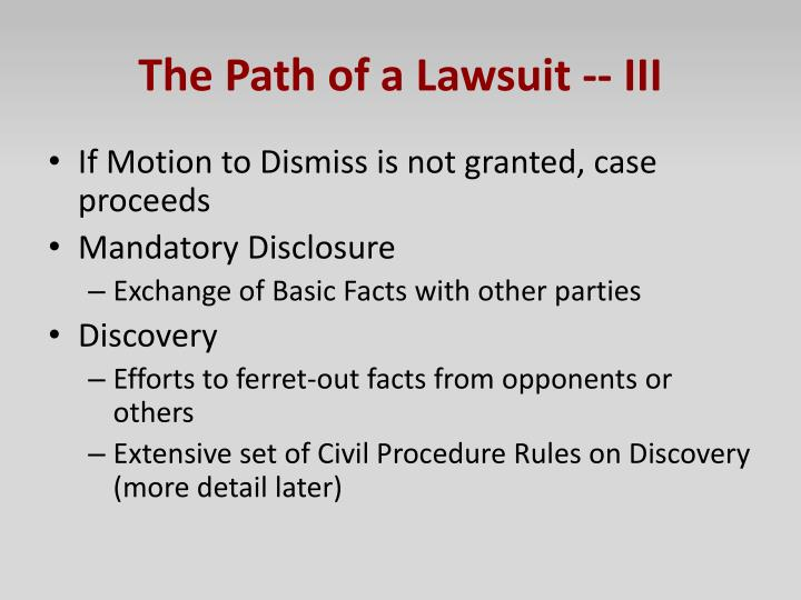 The Path of a Lawsuit -- III