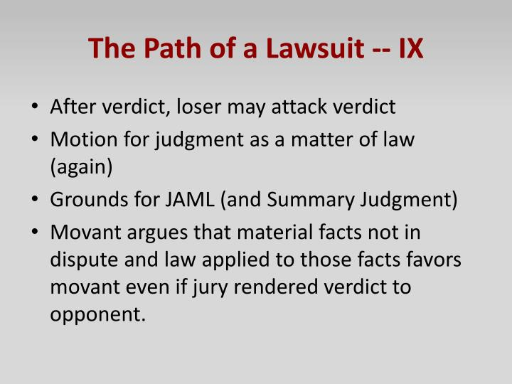The Path of a Lawsuit -- IX