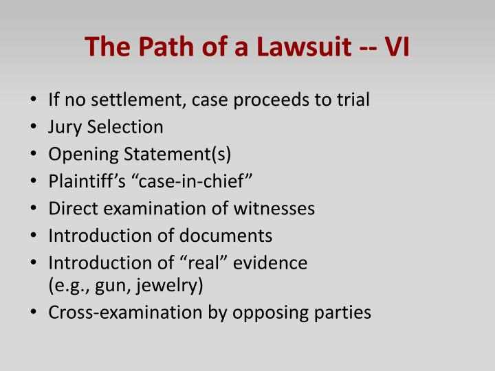 The Path of a Lawsuit -- VI