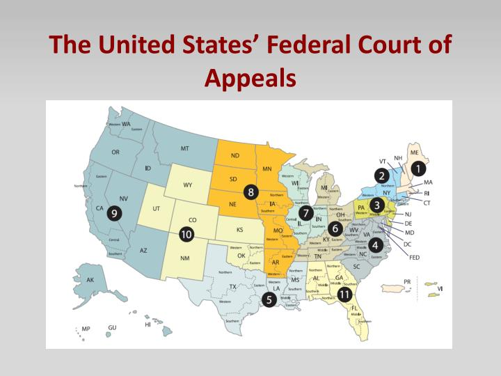 The United States' Federal Court of Appeals