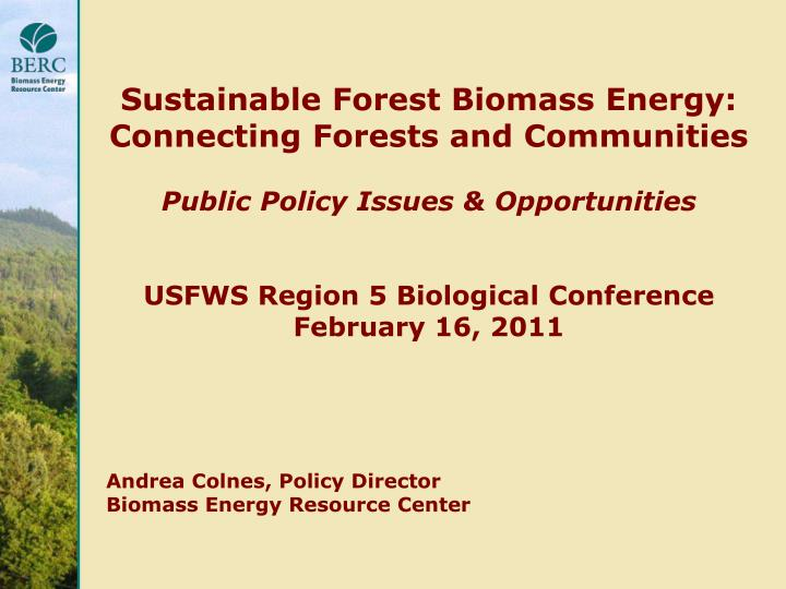 Sustainable Forest Biomass Energy: