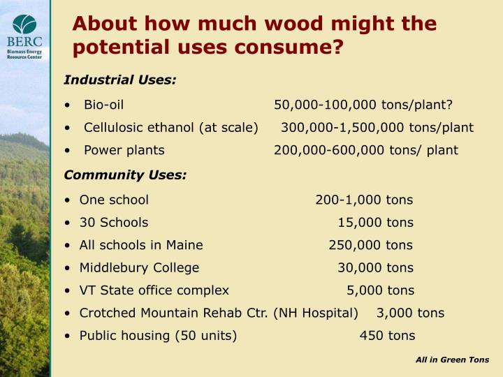 About how much wood might the potential uses consume?