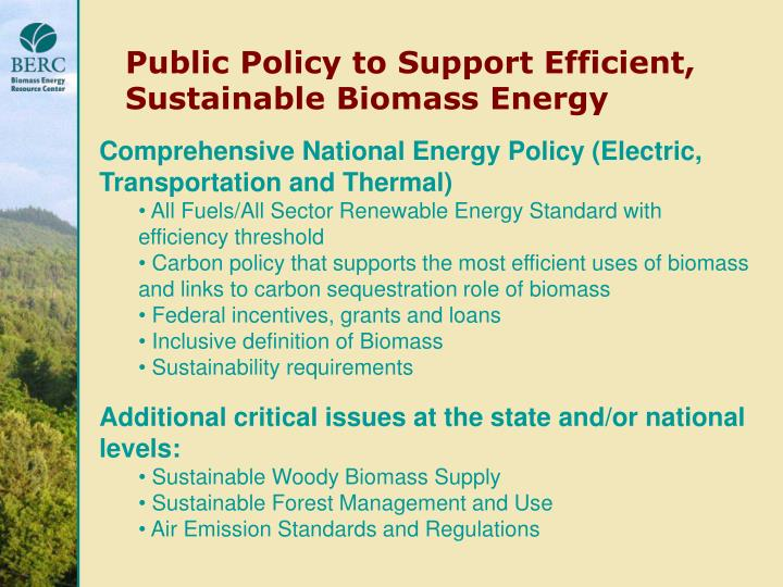 Public Policy to Support Efficient, Sustainable Biomass Energy