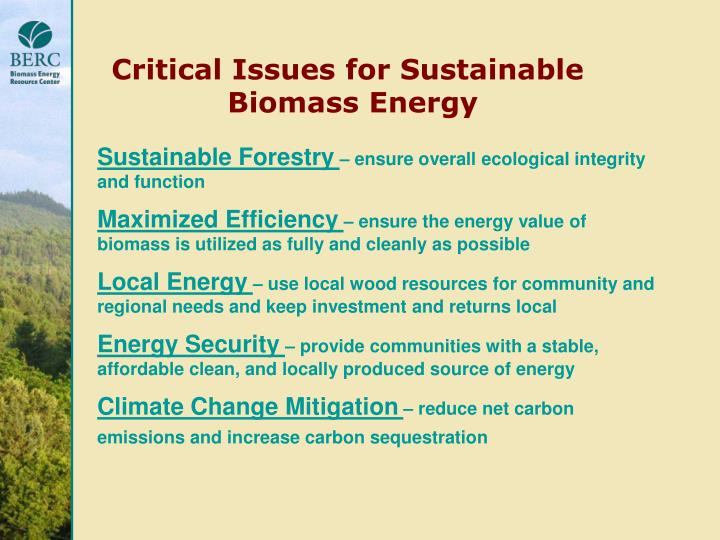 Critical Issues for Sustainable