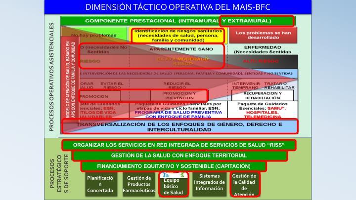DIMENSIÓN TÁCTICO OPERATIVA DEL MAIS-BFC