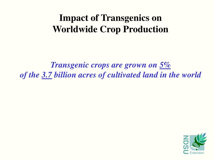 Impact of Transgenics on