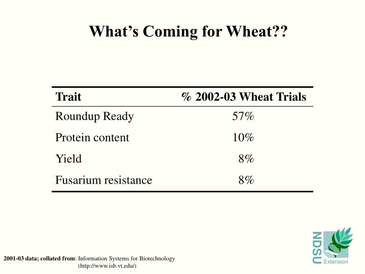 What's Coming for Wheat??