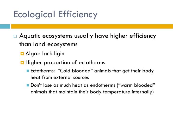 Ecological Efficiency