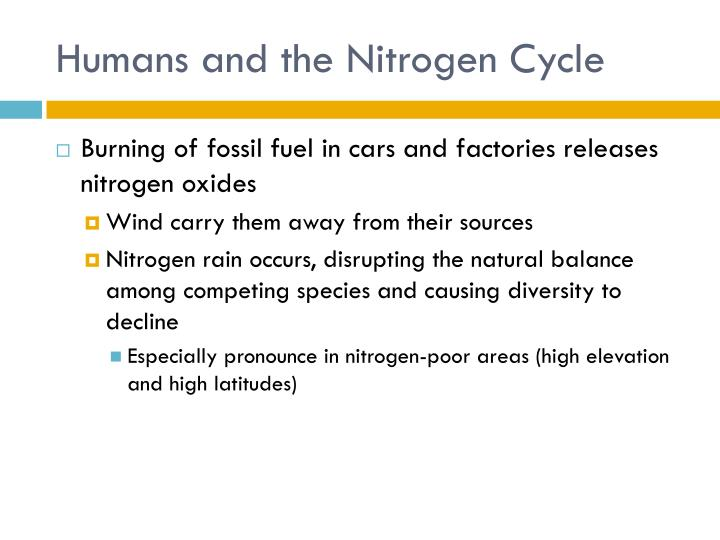 Humans and the Nitrogen Cycle
