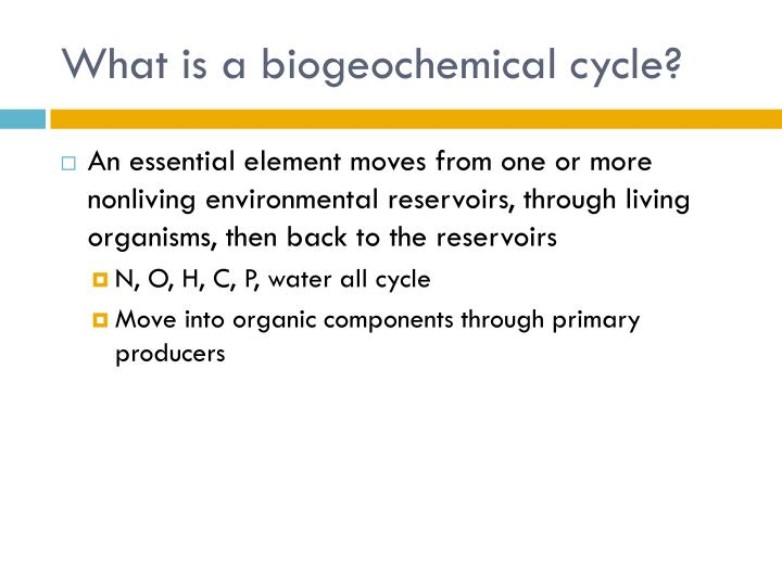 What is a biogeochemical cycle?