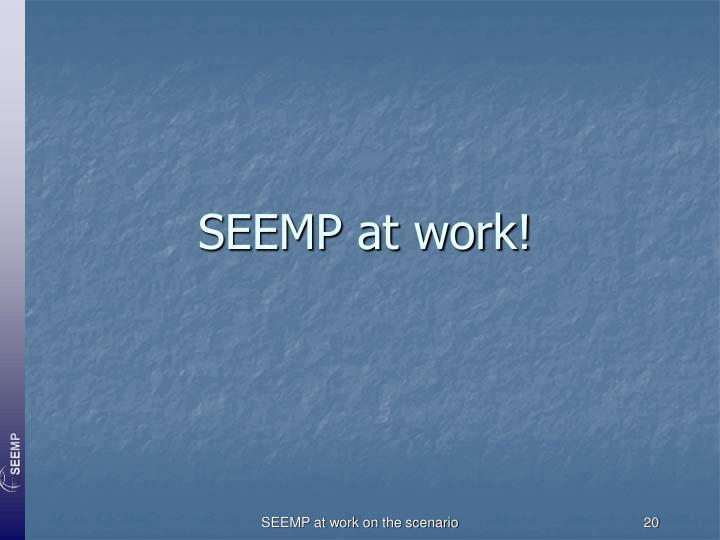 SEEMP at work!