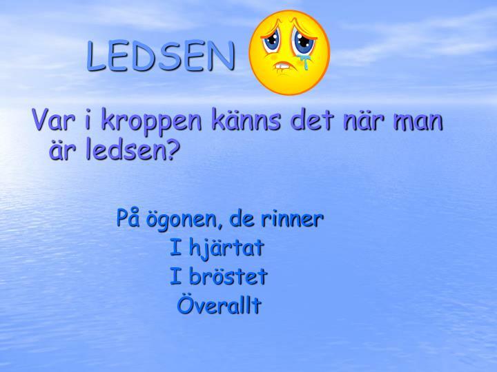 LEDSEN