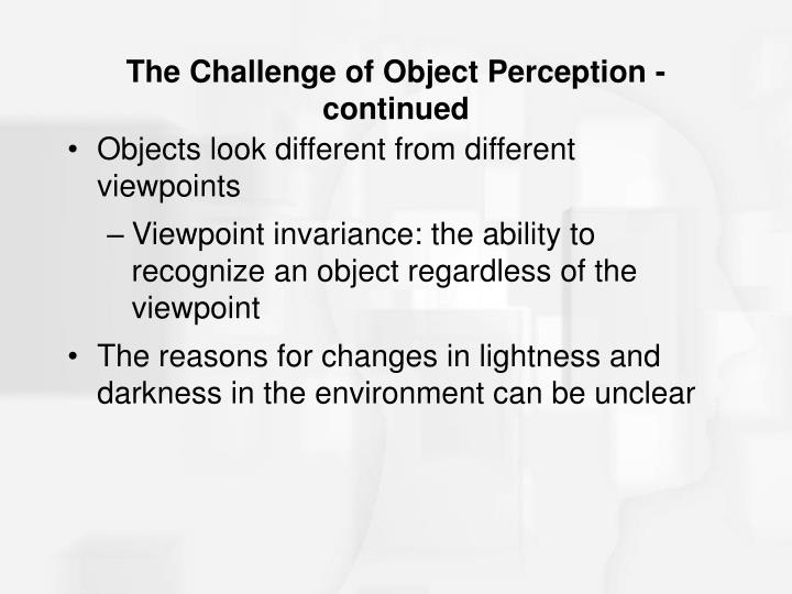 The Challenge of Object Perception - continued