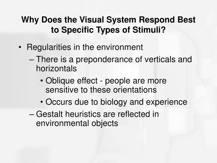 Why Does the Visual System Respond Best to Specific Types of Stimuli?