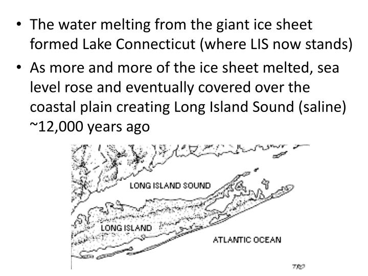 The water melting from the giant ice sheet formed Lake Connecticut (where LIS now stands)