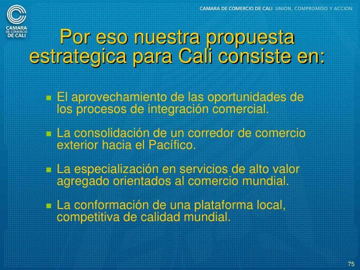 Por eso nuestra propuesta estrategica para Cali consiste en: