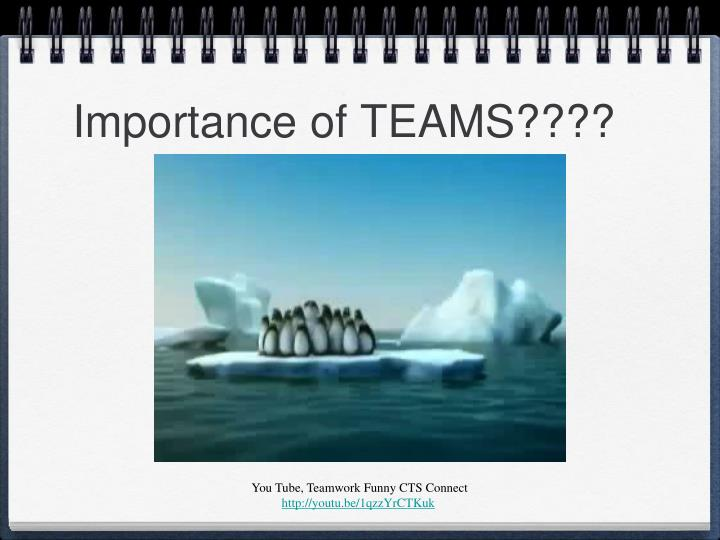 Importance of TEAMS????