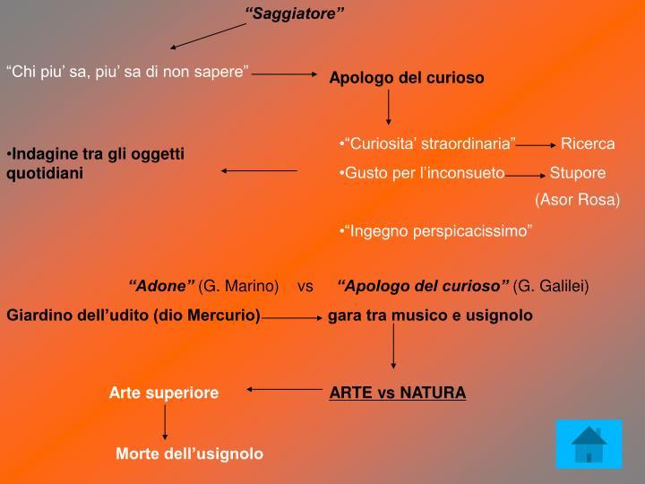 """""""Saggiatore"""""""