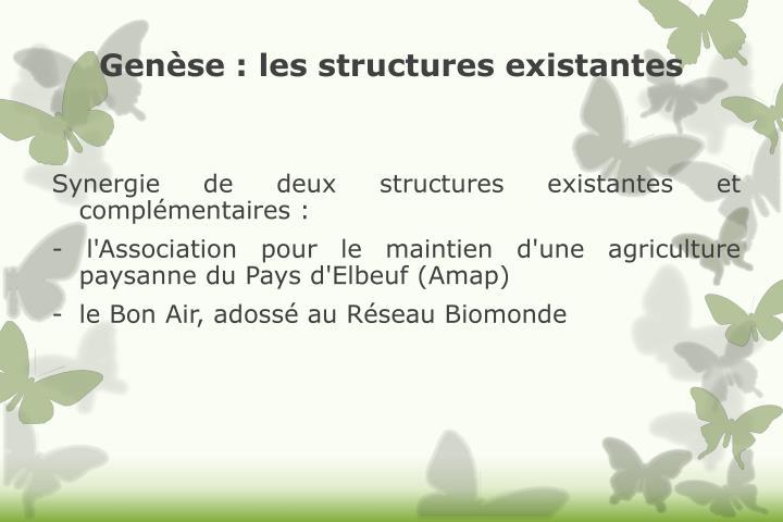 Genèse: les structures existantes
