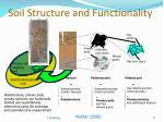 soil structure and functionality