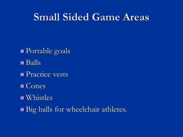 Small Sided Game Areas