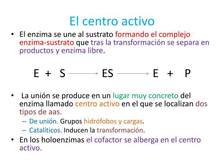 El centro activo