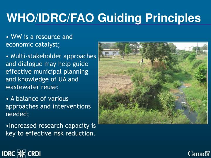 WHO/IDRC/FAO Guiding Principles