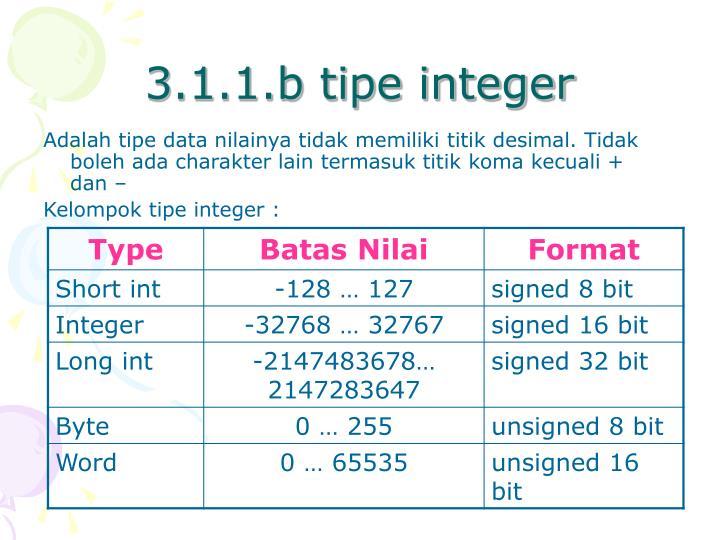 3.1.1.b tipe integer