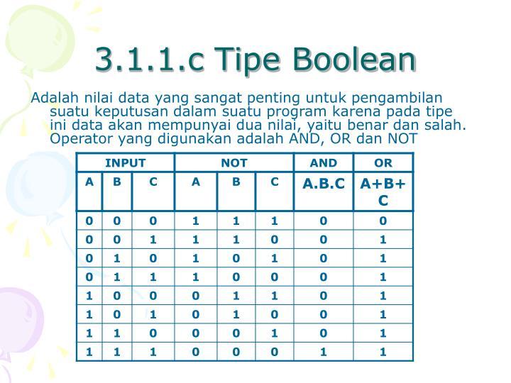 3.1.1.c Tipe Boolean