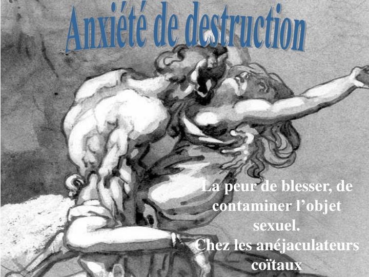 Anxiété de destruction